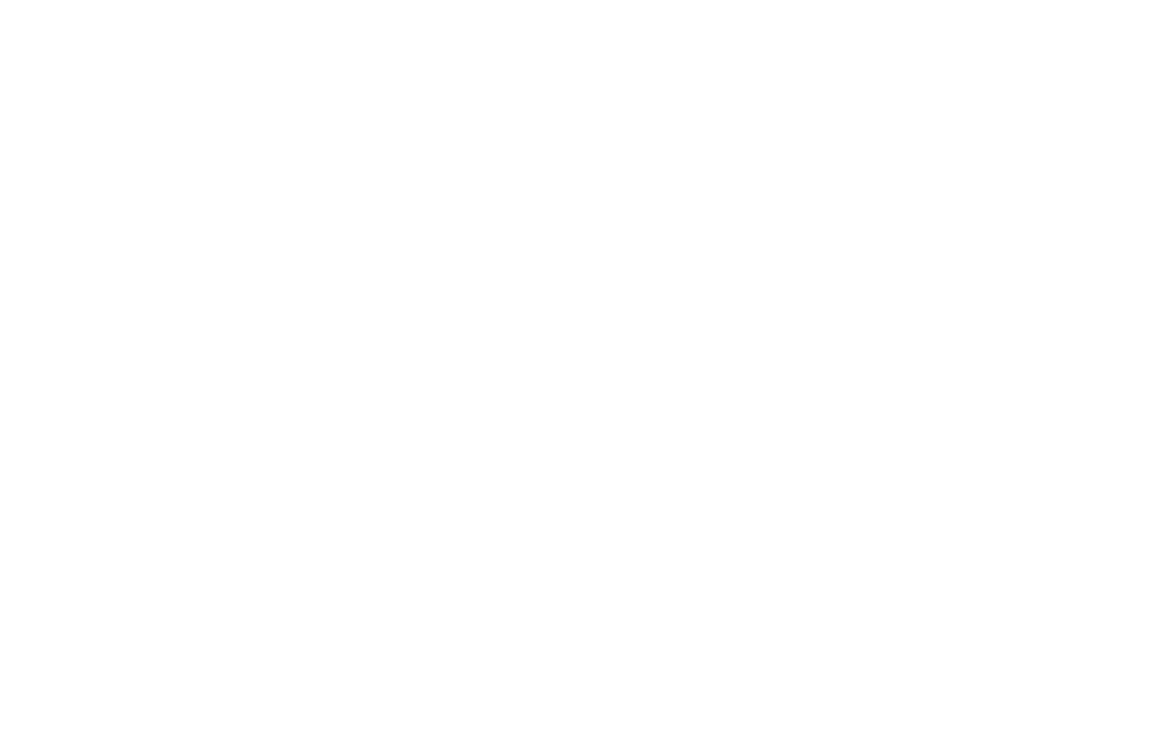 Panthers – 2019 Merchandise